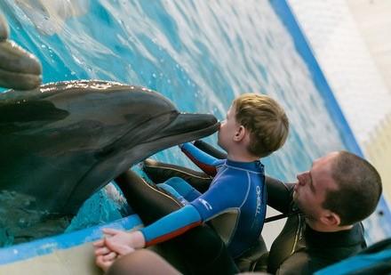 Отзыв мамы. Кукушкин Федя прошел курс дельфинотерапии в г. Анапа