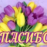 Спасибо за март!